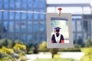 Why You Should Consider Pursuing Your Doctoral Degree Online
